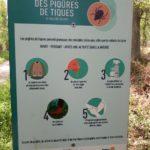 Contre la maladie de Lyme