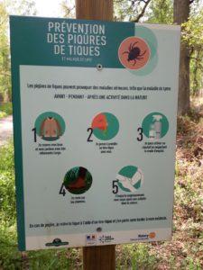 Read more about the article Contre la maladie de Lyme