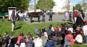 Read more about the article La marche de l'Hurepoix